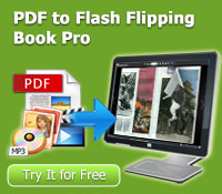 pdf to flash flipping book